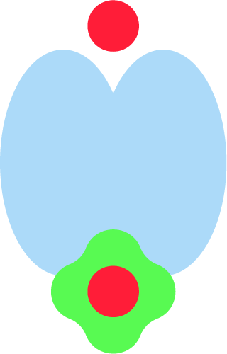 shape-3